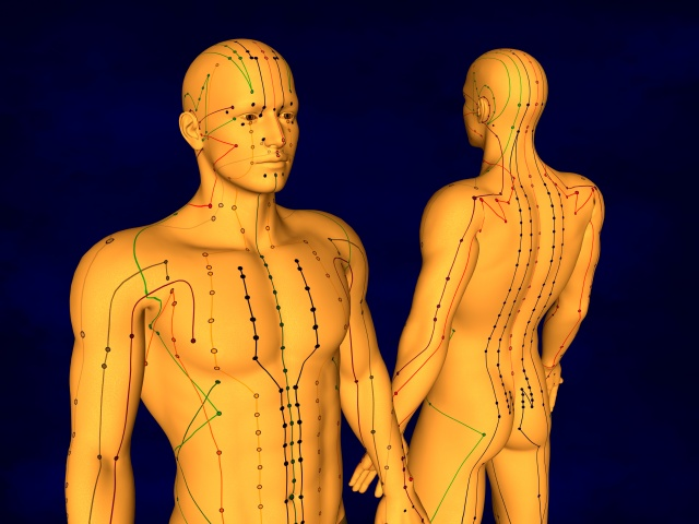 3D Model, Meridians and Acupuncture Points, Human Body, Acupuncture Meridian Model, Blue Background